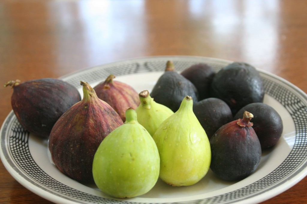 Assorted Fresh Figs: (from left to right) Brown Turkey, Kadota, and Black Mission