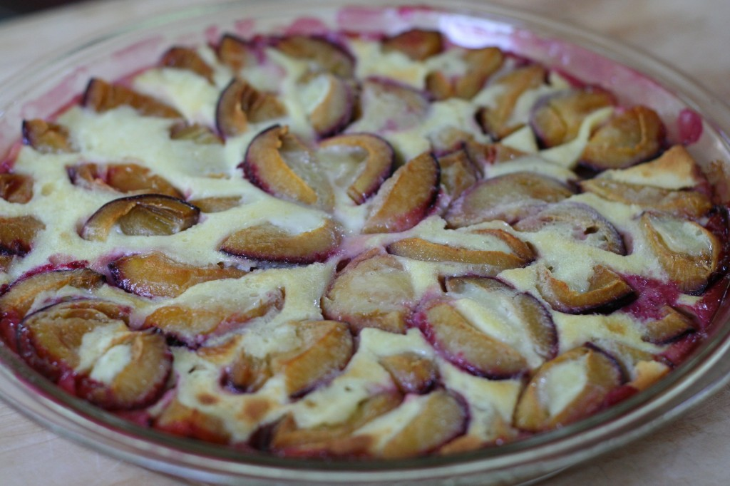 Plum Clafouti from the Oven